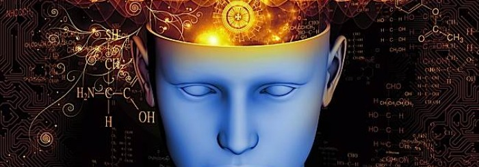 Buddha-Weekly-Brain-function-cognitively-enhanced-by-vajrayana-meditation-according-to-research-Buddhism-700x245 (1)